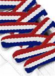 Landenveter Nederland nederlandse vlag in schoen