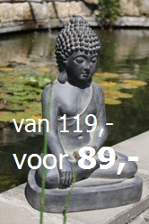 Aanbieding Boeddhabeeld