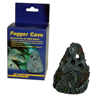 Fogger Cave