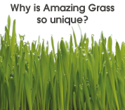 why is Amazing Grass so Unique.jpg