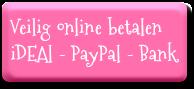 Veilig online betalen via iDEAL, PayPal of Bankoverschrijving