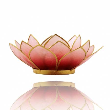 Lotus Capiz Sfeerlicht rood roze gouden randen