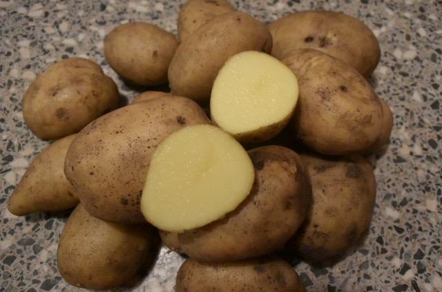 Aardappel - Vitabella nieuwe oogst