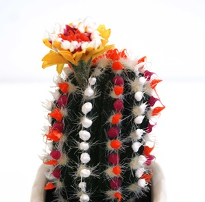 Cactus object four