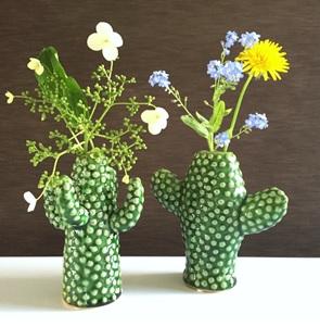 Cactus vaasjes set NIEUW