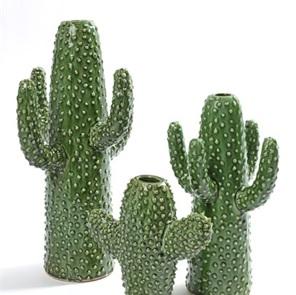 Cactus vase small