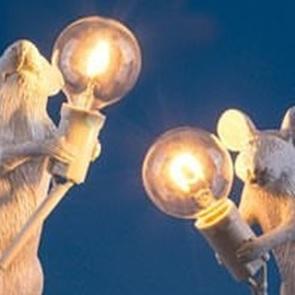 Reserve lampje Mouse lamp*