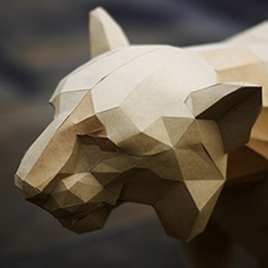 Paper kit Tiger Large