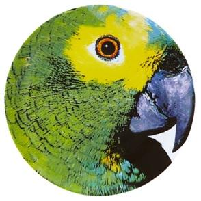 Parrotv Bird Plate
