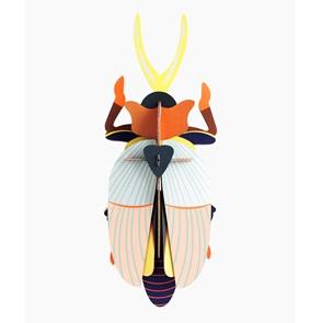 rhinoceros beetle*