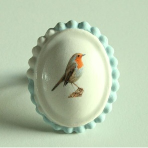 Ring roodborst blauw