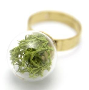 Ring groen mos*