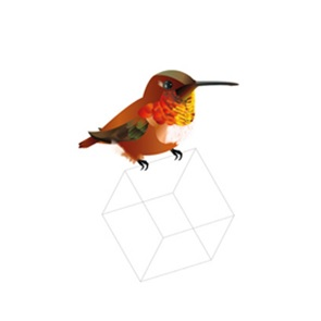 Rufous Poster