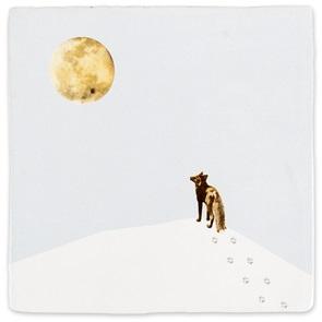 Storytiles Met volle maan*