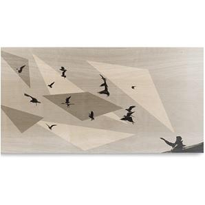 Storywood Vliegen