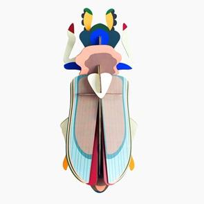 Tiger beetle*