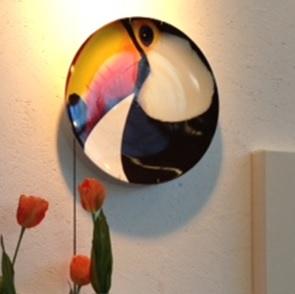 Bird Toucan bord