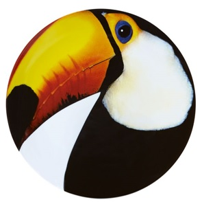 Toucan Bird Plate