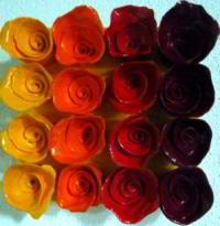 http://myshop.s3-external-3.amazonaws.com/shop28388.pictures.roosjes_oranje_kl.jpg