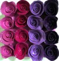 http://myshop.s3-external-3.amazonaws.com/shop28388.pictures.roosjes_roze_kl.jpg