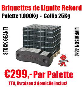 1 palette de briquettes de lignite (Pack de 25 kg)