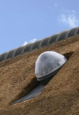 Daglicht systeem 35 cm diameter voor rieten dak