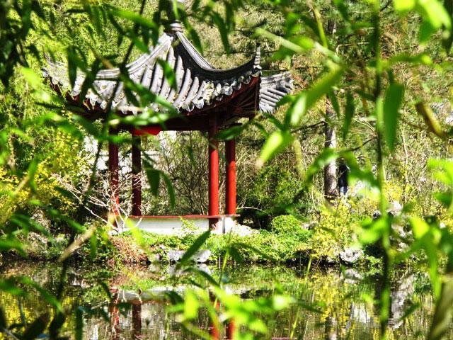 Tuindoek Japanse tuin