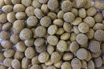 http://myshop.s3-external-3.amazonaws.com/shop4409500.pictures.silkworm%20bits.jpg