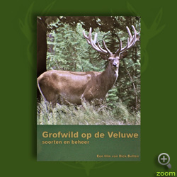 """DVD \""""Grofwild op de Veluwe\"""""""