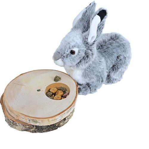 intelligentiespel konijn draaischijf