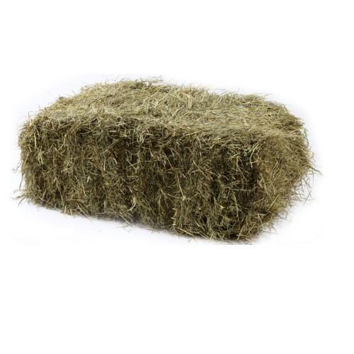 baal 15  kilo konijnen groen hooi met fijn stro.