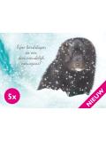 Nieuw: nerts kerstkaarten (5 stuks + envelop)