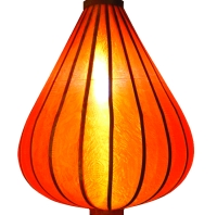 https://myshop.s3-external-3.amazonaws.com/shop1301000.pictures.Lampion-druppel-oranje-verlicht.jpg