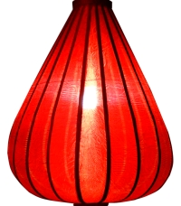 https://myshop.s3-external-3.amazonaws.com/shop1301000.pictures.Lampion-druppel-rood-verlicht.jpg