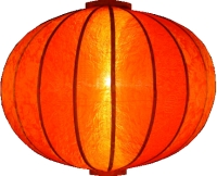 https://myshop.s3-external-3.amazonaws.com/shop1301000.pictures.Lampion-rond-oranje-verlicht.jpg
