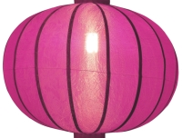 https://myshop.s3-external-3.amazonaws.com/shop1301000.pictures.Lampion-rond-roze-verlicht.jpg
