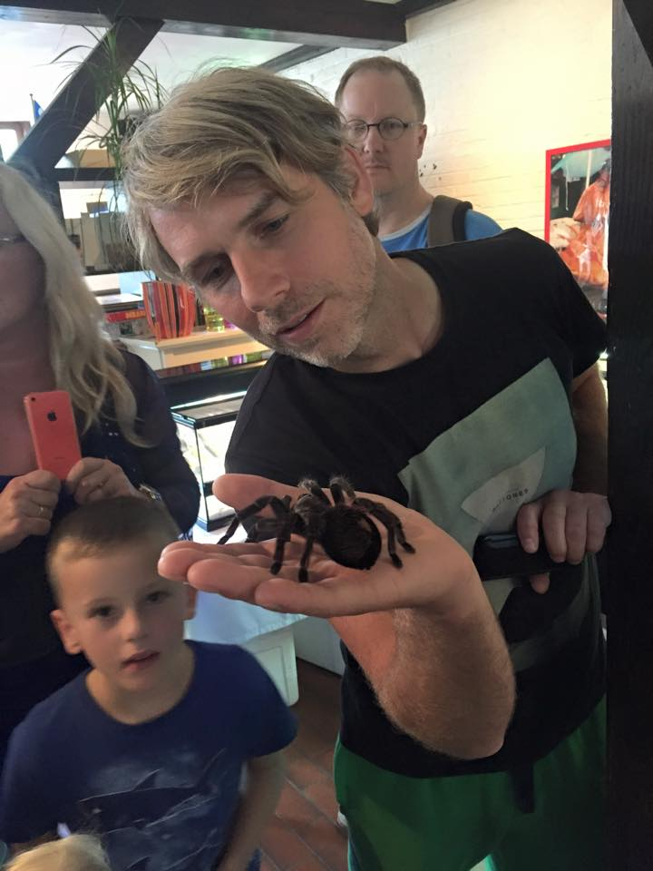Spider_bommeer