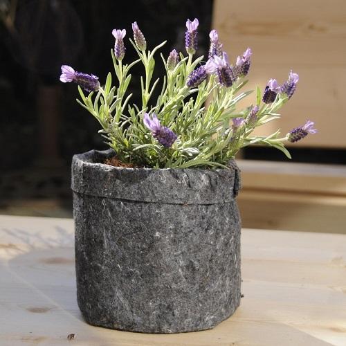 Plantzak Grijs 3,8 ltr