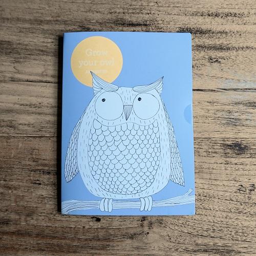 Wenskaart Grow Your Owl