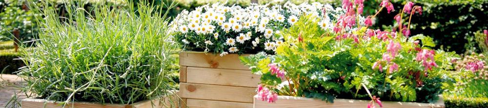 bloembakken-banner-2.jpg