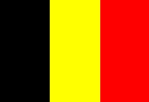 vlag belgie.jpg
