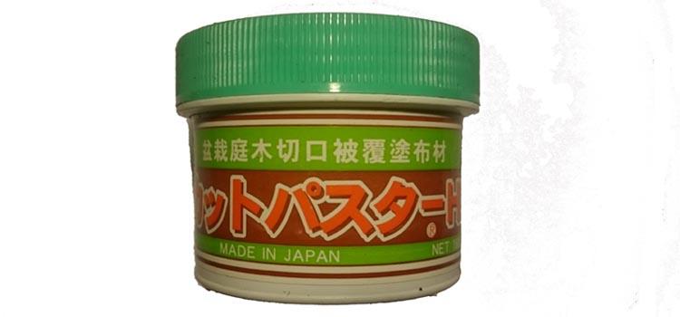 Wondpasta groen 160 gram