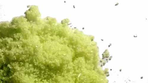 Water oplosbaar 250gr plant starter