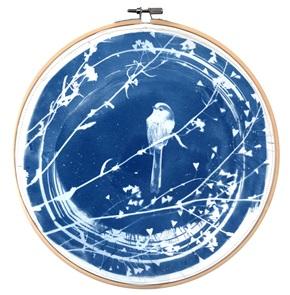 Blue bird XL Kunstwerkje AA