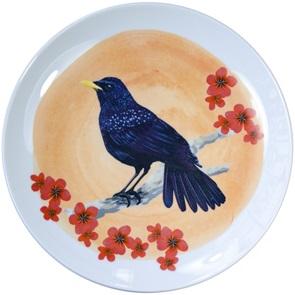 Blauwe Fluitlijster bord