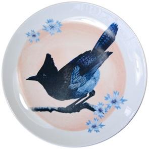 Steller's jay bird plate