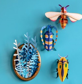 Rosalie beetle