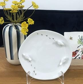 Plate 3 birds