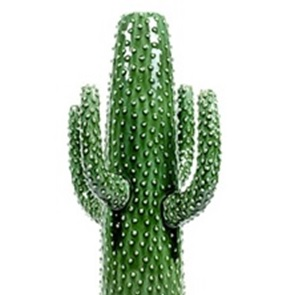 Cactus vaas X-Large