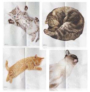 Catnapkins